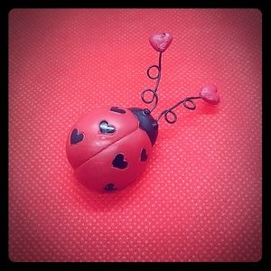 Jewelry - Lady Bug Pin